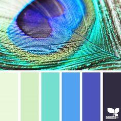 Color Nature 10.4.17