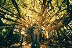 Shiva Tree Temple Photo by Andrew Hara — National Geographic Your Shot