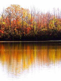 Fall reflections up at Prairie Oaks Metro Park outside Columbus, Ohio.
