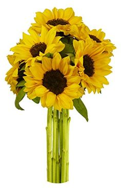 #foodsale Send your family and friends a bright bunch of Sunflowers #that are sure to put them in a cheery mood. I love you, I like you, Happy Birthday or just b...