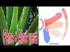 Efectos Del Aloe Vera En el Miembro de los hombres - YouTube
