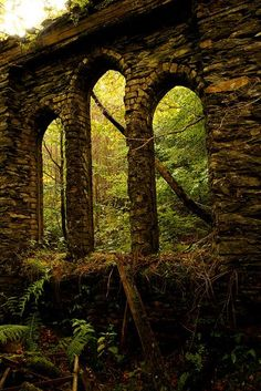 The Enchanted Forest / karen cox. Ruins of an abandoned chapel being enveloped by the forest. Old Buildings, Abandoned Buildings, Abandoned Places, Abandoned Castles, Monuments, Beautiful World, Beautiful Places, Beautiful Ruins, Famous Castles