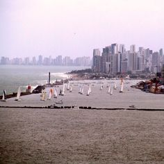 Port of Recife. View from Olinda. Pernambuco. Brazil. Photo by Sergio Dourado.