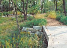 Midwestern University received a 2010 Conservation and Native Landscaping Award for restoring wetlands and wooded areas on the Downers Grove Campus. Downers Grove, College Planner, Outdoor Living, Outdoor Decor, Art Classroom, Lush Green, Acre, Health Care, Restoration