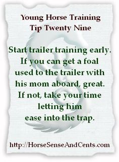 Trailer training isn't something to start when you need to move a horse now - unless of course you have a foal in tow behind a mom who hops right on (might need to put the foal on first even with the best loaders). #YoungHorseTraining
