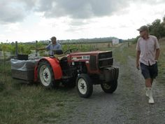 Working the land ! Tractors, Antique Cars, Monster Trucks, Vehicles, Vintage Cars, Car, Vehicle, Tools