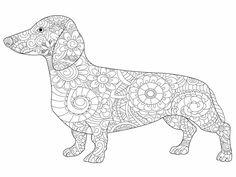 Kostenloses Ausmalbild Hund - Dackel. Die gratis Mandala Malvorlage einfach ausdrucken und ausmalen.