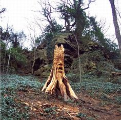 British chainsaw sculptor Tommy Craggs recycles fallen trees or trees culled for woodland management