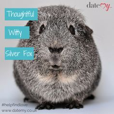 How would you describe yourself in 3 words? #onlinedating #datemy #funny #romantic #date #love #relationships
