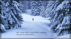 Bright Eyes ~ If Winter Ends...with LYRICS