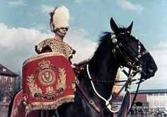 The drummer wears full dress with white bearskin cap a present to the Scots Greys from Tsar Nicholas when Colonel in Chief. Bad Santa, Drum Major, Military Style Jackets, British Army, Military History, Military Fashion, Horse Riding, Tsar Nicholas, Horses