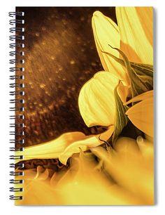 Sunflowers Spiral Notebook featuring the photograph Gold Dust 2 - by Julie Weber