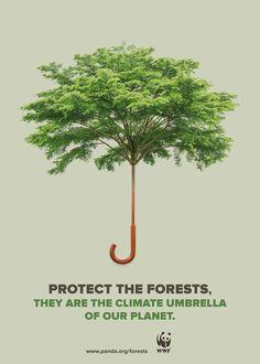 Publicité - Creative advertising campaign - WWF: Protect the forests. They are the climate umbrella of our planet Web Banner Design, Design Web, Deforestation Poster, Environmental Posters, Environmental Science, Desgin, Save Environment, Save Our Earth, Save The Planet