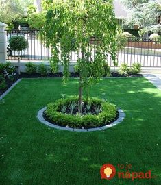 Front yard artificial grass design ideas landscape pictures beautiful landscaping on a budget . Front Garden Landscape, Diy Tree, Small Front Gardens, Front Yard Garden, Garden Beds, Garden Design Ideas On A Budget, Front Garden Design, Trees For Front Yard, Front Yard