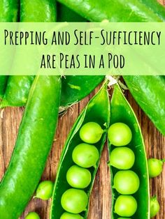 Prepping and self-sufficiency are peas in a pod and DIY is a big part of that. This, plus lots of news and article links in the latest Buzz. Survival Prepping, Emergency Preparedness, Survival Food, Survival Skills, Self Sufficient Homestead, Gardening Books, Grow Your Own Food, Sustainable Living, Permaculture
