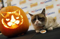 Grumpy Cat shows you how to create the scowliest Jack-O-Lantern with this pumpkin-carving template.