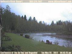 Anyone else need a moment of zen? Quillayute River Resort Webcam