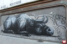 ROA Street Art Belgium