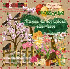 ch-May2015-BlossomingW4E