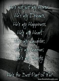 Yeah. (But change it to she) haha. I love crazy mares