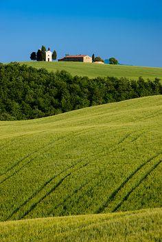Rolling wheat fields surrounding Chappelle di Vitaleta, Tuscany Italy