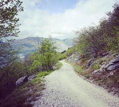 Der Weg wird kein leichter sein... #bike #mountains #mtb #weg #berg #passo #awesomepic #gardasee #biken #torbole #mountainbike #awesomepics #awesome_foto