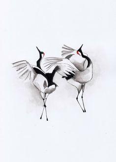 Japanese cranes mating ritual