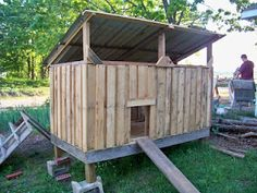 Chicken coop made from pallets and re-purposed materials!