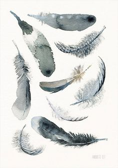 Black and white Feather art print 9 soaring downs door TheClayPlay