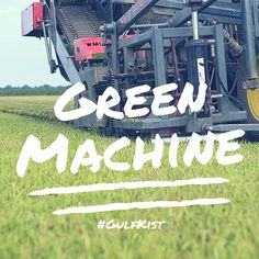 We can't help it we're #green machines. #GulfKistSod #TurfLife