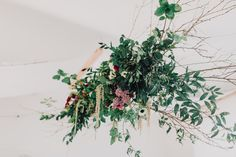 Styled Shoot at Horetown House - Butterfly Photography Butterfly, Creative, Photography, House, Photograph, Home, Fotografie, Photoshoot, Butterflies