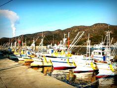 漁船(兵庫県・室津)- Fishing boats (Murotsu, Hyogo, Japan)