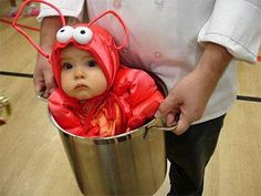 Cute Halloween Get Up for Baby's 1st Halloween... Lobster, Chef & Waiter/Waitress. This is hilarious but E already is too heavy !