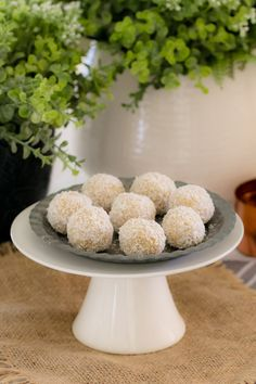These healthy Lemon & Coconut Bliss Balls take just 10 minutes to prepare, use only 4 ingredients, are freezer-friendly and taste AMAZING! It doesn't get any better than that! Easy Lunch Boxes, Lunch Box Recipes, Lunchbox Ideas, Healthy Muffins, Healthy Treats, Fun Desserts, Delicious Desserts, Coconut Protein, Australian Food