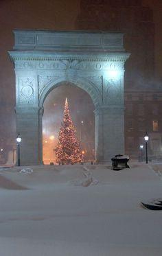 NYC. Christmas tree, Washington Square park. Come on Christmas!