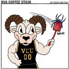 Rams squashing some UR spiders! Pep Club, Virginia Commonwealth University, Coffee Staining, Bee Theme, Gold Rush, College Life, Spiders, Dancers, Cheerleading