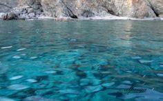 ΤΑ ΧΡΩΜΑΤΑ ΤΗΣ ΣΑΜΟΘΡΑΚΗΣ Greece, Island, Water, Places, Outdoor, Beautiful, Block Island, Water Water, Outdoors