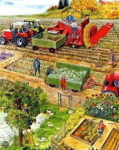 Praatplaat oogsten met de tractor