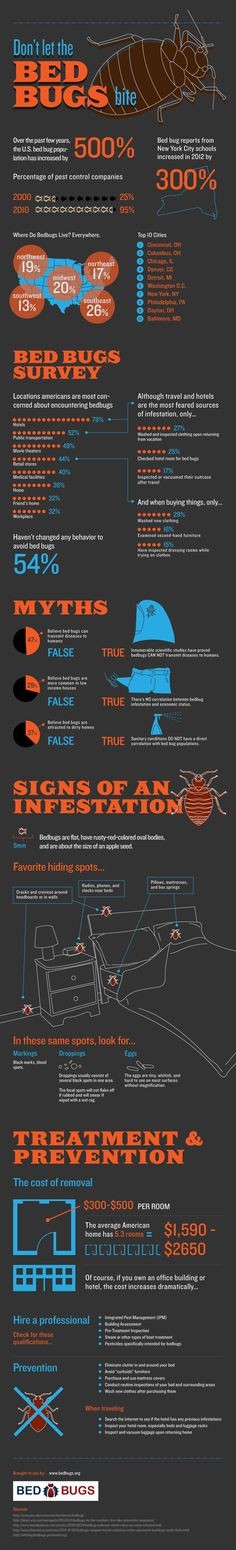 Bed Facts- Bed bugs have become a common problem throughout and businesses across the country. The insect can be tricky to remove and their bites are a painful, itchy nuisance. When bed bugs bite, then it's time to call the professionals. Bed Bug Control, Pest Control, Flea Removal, Rid Of Bed Bugs, Bed Bugs Treatment, Bed Bug Bites, Pest Solutions, Bees And Wasps, Bugs And Insects