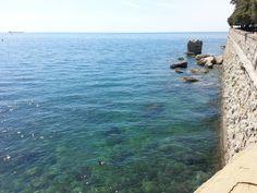 Castello Miramare, Trieste, Italy, the sea is always my favorite subject LOL My Favourite Subject, My Favorite Things, Trieste, 30th Anniversary, Italy, Sea, Paris, Adventure, Water