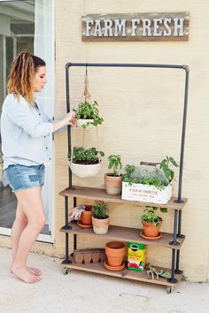Plant Stand Discover Make Your Own DIY Rolling Garden and Plant Shelf These DIY rolling shelves are a perfect way to create a vertical herb garden with plant decor for indoor or outdoor use! Plus you can move it easily for more or less sun or from Plant Shelves Outdoor, Garden Shelves, Outdoor Plant Stands, Tiered Plant Stand Indoor, Herb Garden, Garden Plants, House Plants, Cactus Plants, Modern Plant Stand