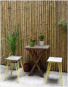 """I presume you are going with the """"living"""" bamboo screen and not this type of bamboo screen? I do like this as well."""