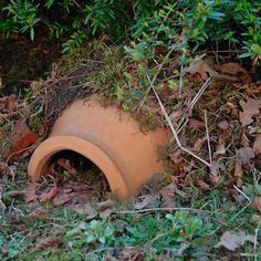 Ceramic Hedgehog House - Manufactum http://www.manufactum.co.uk/ceramic-hedgehog-house-p1443905/