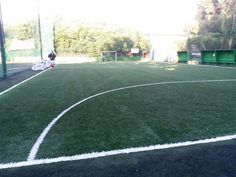 Brand new artificial turf