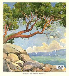 Gabriola Island, B.C copy.jpg 800×881 pixels