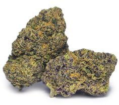 Sunset-Sherbet - Culture Magazine - Cannabis Lifestyle and News Magazine
