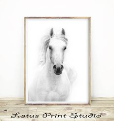 Horse Print, Animal Photography, White Horse, Black & White, Minimalist Home Decor, Large Printable Poster, Digital Download,  #388