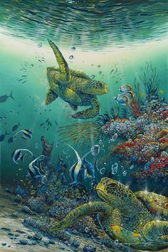 Hide and Seek by Robert Lyn Nelson ~ sea turtles tropical fish coral under the sea art