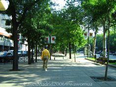Calles de Madrid #vidamadrid #Madrid #madridtme #instamadrid #igersmadrid #ok_madrid #madridgrafias #madridmemola #madridmemata #loves_madrid #ig_madrid #igers #マドリード #マドリッド #españa #instaespaña #callesdemadrid #calles  #paseodelacastellana #verde
