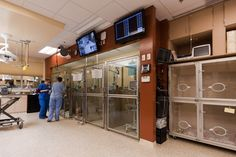 Critical care wards - Photo gallery: Veterinary housing solutions to show cats and dogs the love - dvm360